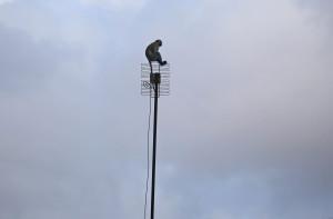 monkey wait to see the super moon  in Mogadishu